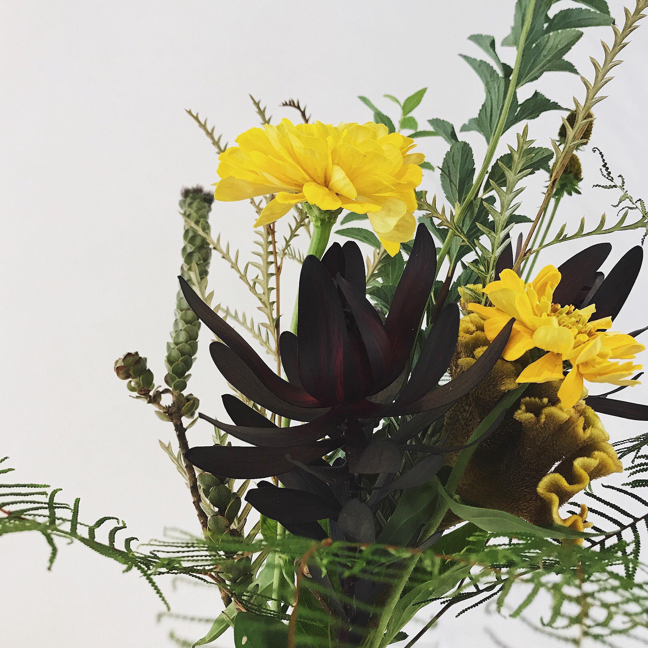 Laughfulの花のある暮らし